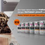 Harga Makanan Kucing Pro Plan dan Cara Menentukan Porsinya